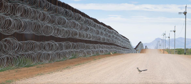 "Fot. Alejandro Prieto, ""Roadrunner Approaching the Border Wall"". 2. miejsce w kategorii Nature"
