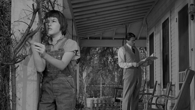 """Po 55 latach Harper Lee wyda kontynuację """"Zabić drozda"""""""