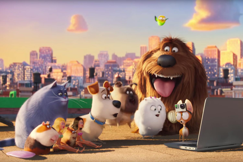 """Okazuje się, że psy mają o wiele ciekawsze życie niż ty i ja. """"Sekretne życie zwierzaków domowych"""", recenzja sPlay"""