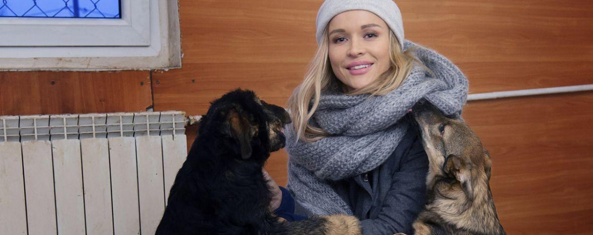 Joanna Krupa kocha zwierzęta, ale czy nadaje się do ich ratowania? – recenzja show Misja pies