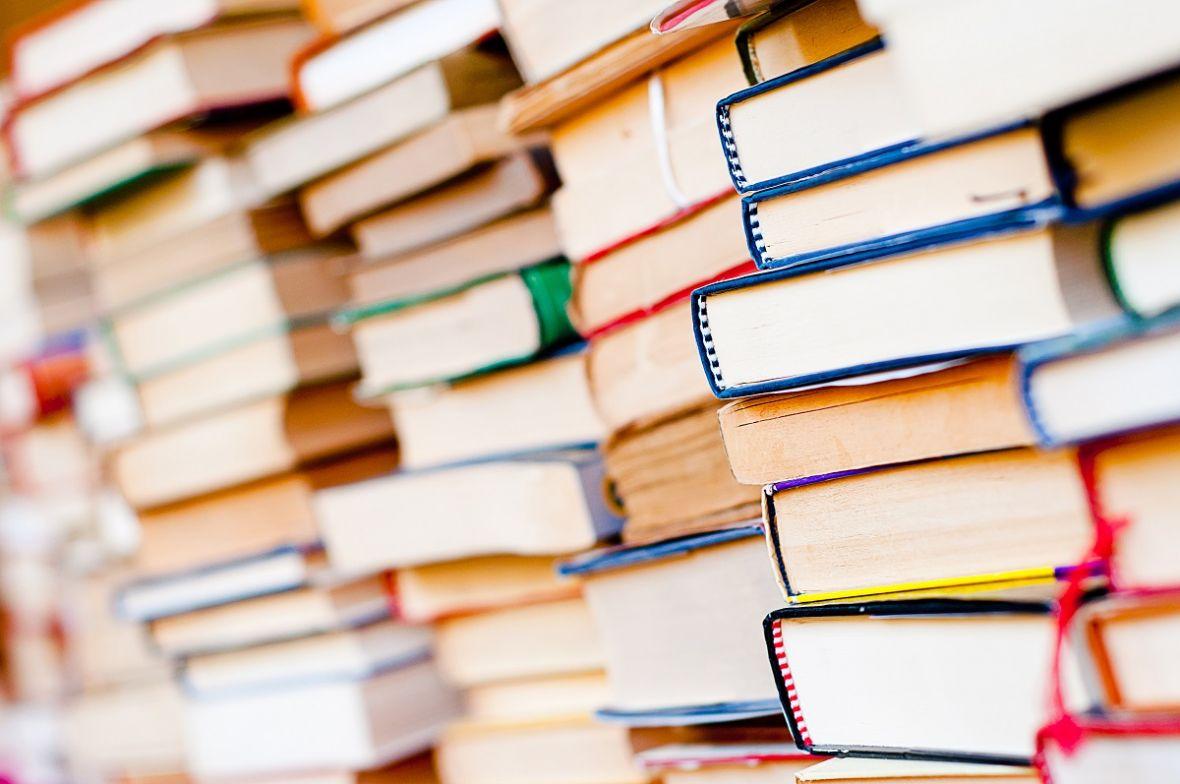 Masa, Remigiusz Mróz i lektury piłkarskie. Sprawdź nowe książkowe promocje w Biedronce