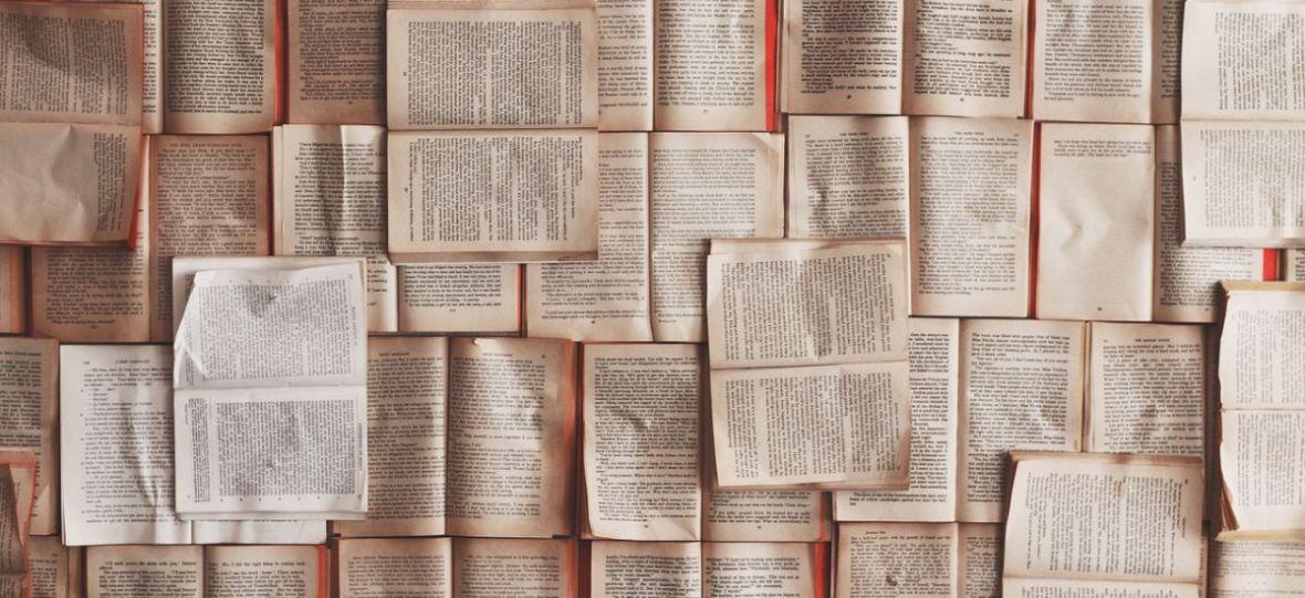 Jesienny kiermasz książek w Biedronce, to dobra okazja, aby uzupełnić biblioteczkę