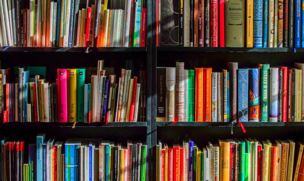 Uzupełniamy domową bibliotekę. Tych książkowych bestsellerów nie przegap w Biedronce