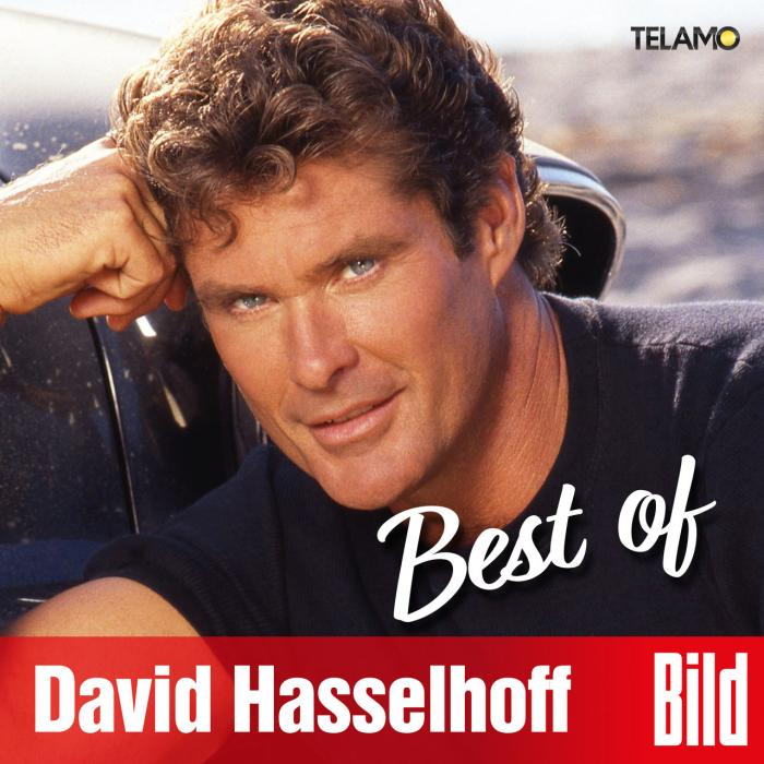 David Hasselhoff bild best of