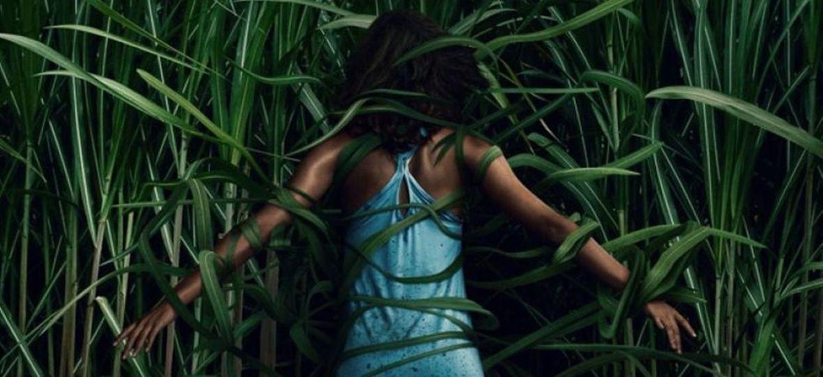"""""""W wysokiej trawie"""" Netfliksa to najbardziej frustrujący horror ostatnich miesięcy"""