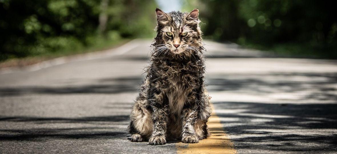 """""""Smętarz dla zwierzaków"""" – nowa adaptacja powieści Stephena Kinga już dziś na antenie HBO oraz w serwisie HBO GO"""