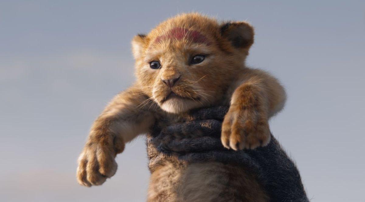 Król Lew - kadr z filmu