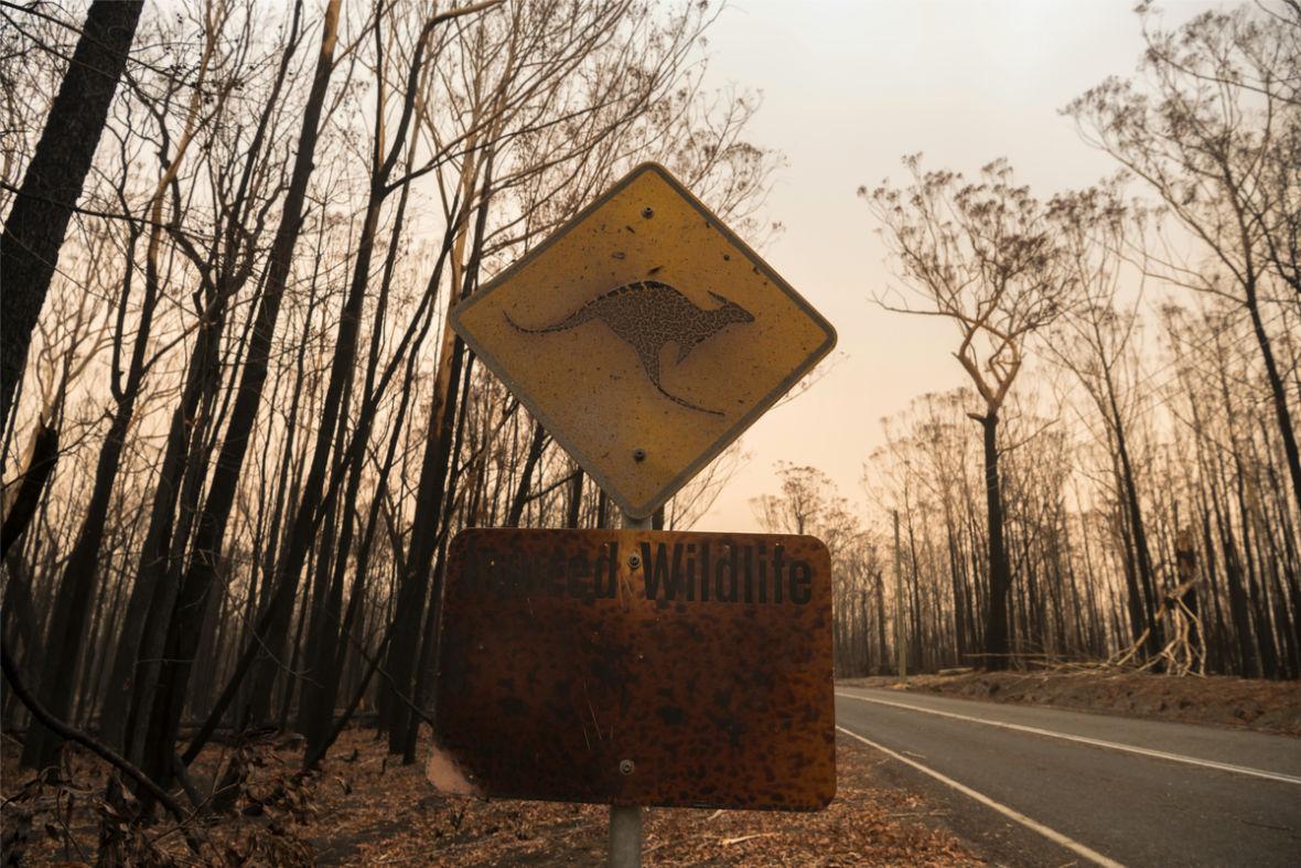 """Przed nami katastrofa ekologiczna, za nami lata zaniedbań. """"Chłopi 2050"""" od Storytel to ostrzeżenie przed nadciągającą przyszłością"""