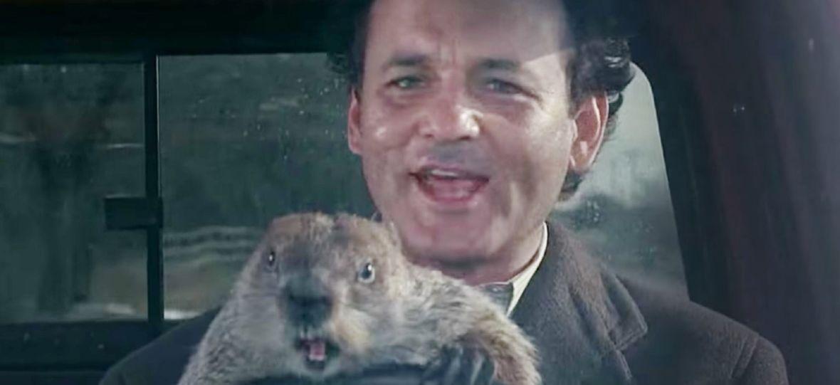 """Powstaje serialowy spin-off kultowego filmu z Billem Murrayem. O czym opowie kontynuacja """"Dnia świstaka""""?"""