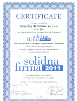 Solidna Firma 2011