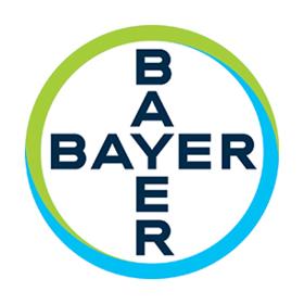 Anna Kaczmarek-Sawicka - Source To Pay Team Leader - Bayer ...