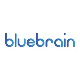 Blue Brain Sp. z o.o. Sp. k.