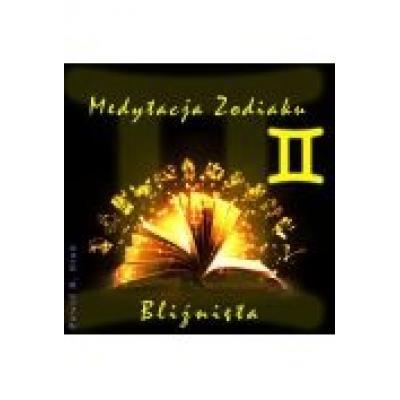 (e) medytacja zodiaku. bliźnięta - paweł stań