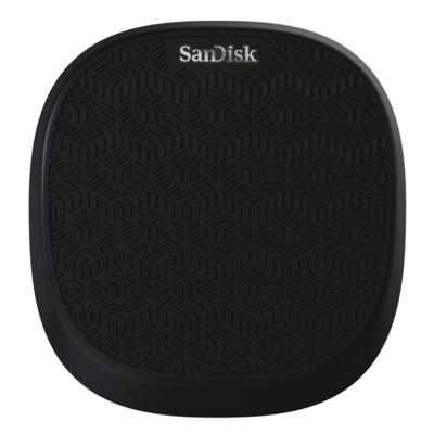 Pamięć USB SANDISK iXpand Base 32GB SDIB20N-032G-GN9UN