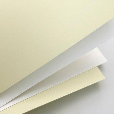 Papier ARGO Karton ozdobny Gładki Biały
