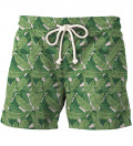 Wasteland shorts