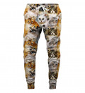 Cat heads sweatpants
