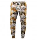 Spodnie dresowe Cat heads