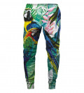 sweatpants with jungle and parrot motive