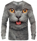 Bluza British cat