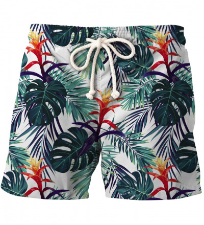 shorts with monstera leaves motive