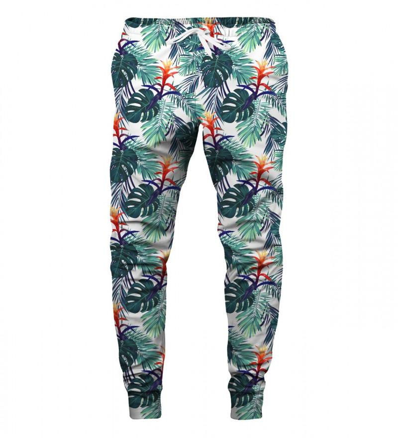 spodnie z motywem liści monstery