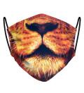 Lionel Face Mask