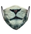 Aslan Face Mask