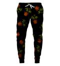 Spodnie dresowe World 4-20