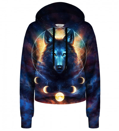 Dream Catcher cropped hoodie