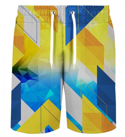 Geometry shorts