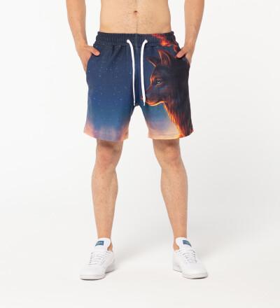 Night Guardian shorts