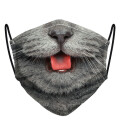 British Cat womens face mask