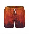 SOLARIS Swim Shorts