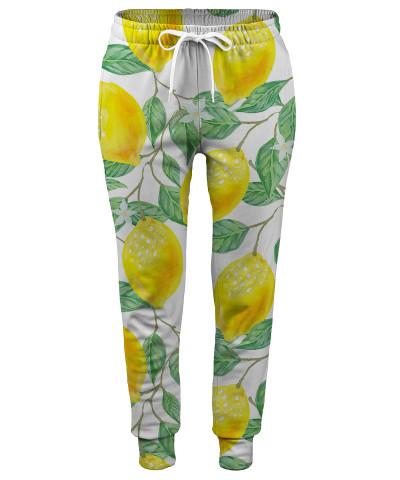 Spodnie damskie LEMON TREE