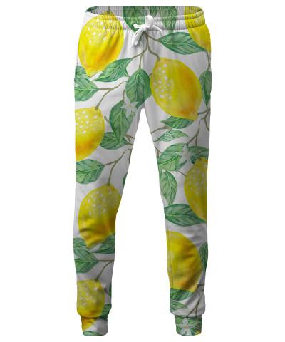 Spodnie LEMON TREE