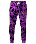 Spodnie PURPLE WEED