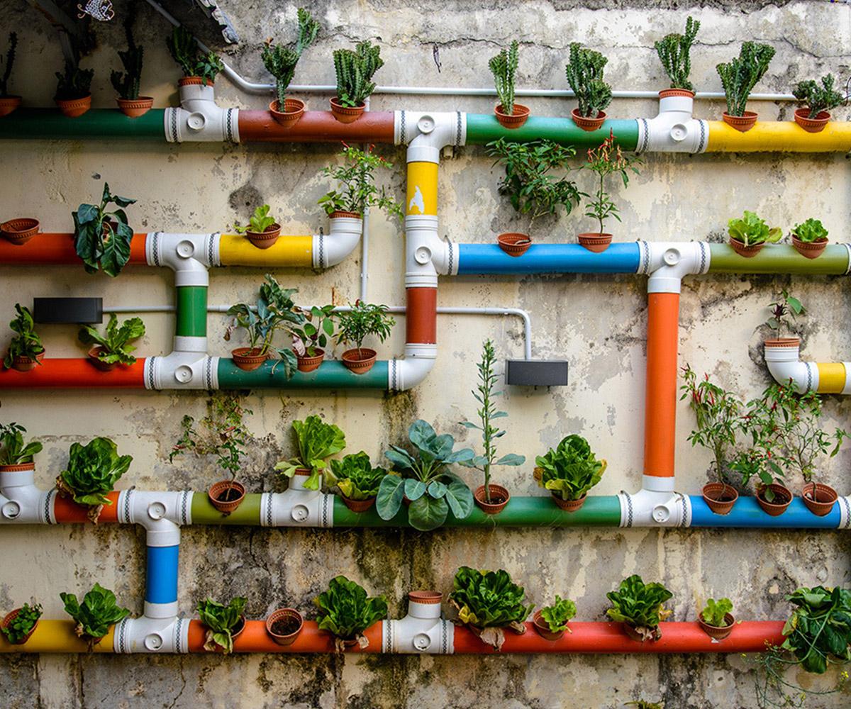 Ogrodnictwo miejskie