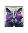 Szorty BITCHES LOVE CATS