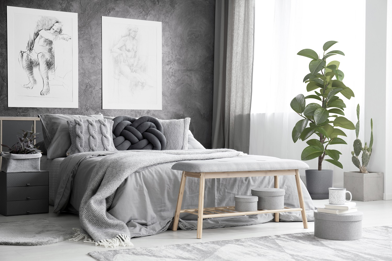 Rośliny idealne do sypialni