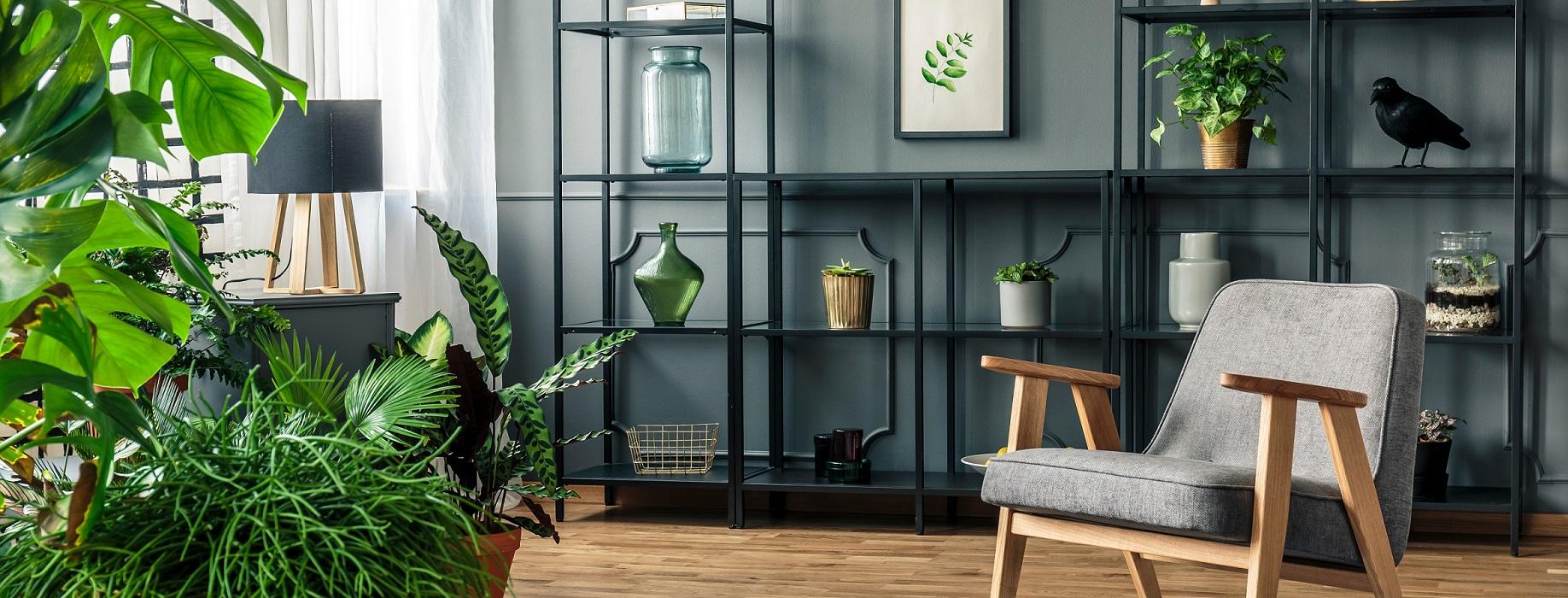 roślinna aranżacja w salonie