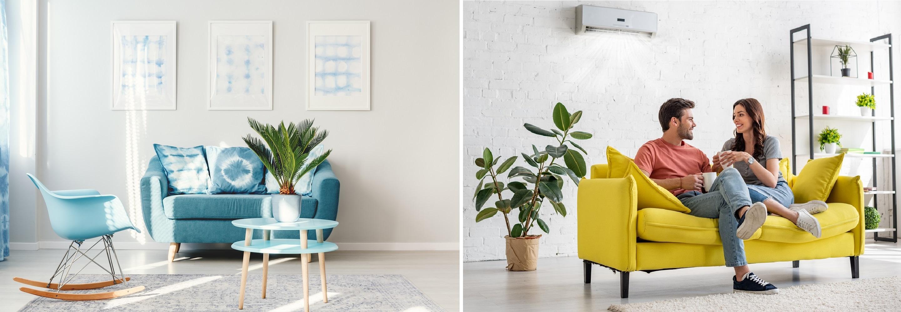 roślinne aranżacja w salonie 2 propozycje