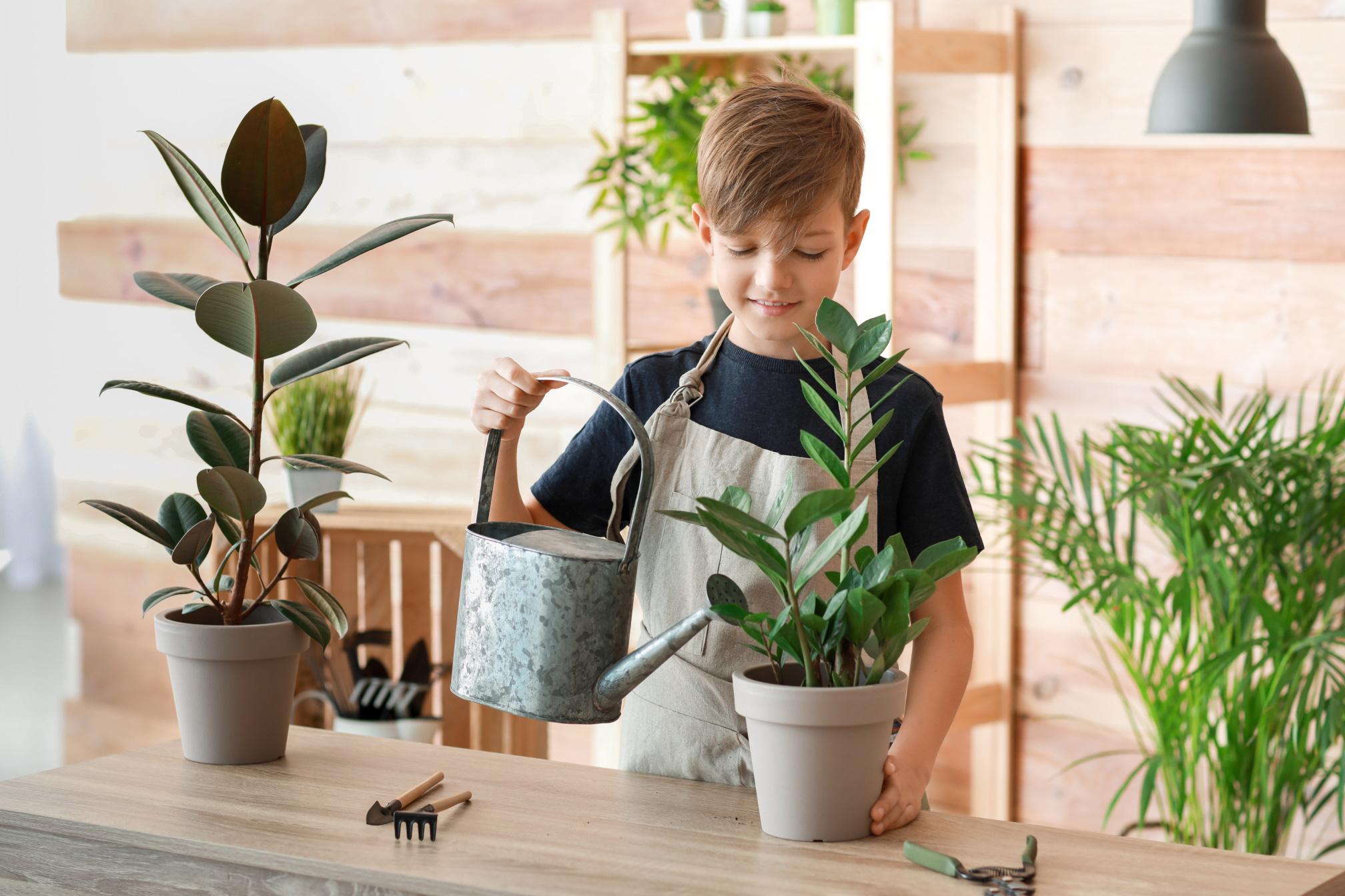 Rośliny do pokoju dziecka