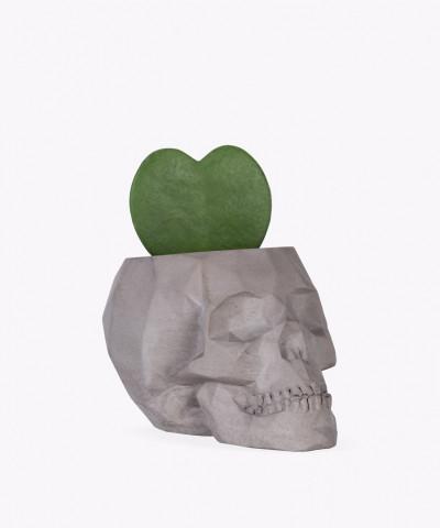 Hoja Kerri w szarej betonowej czaszce