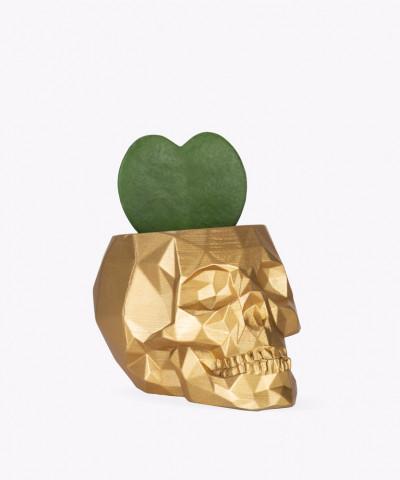 Hoja Kerri w złotej betonowej czaszce