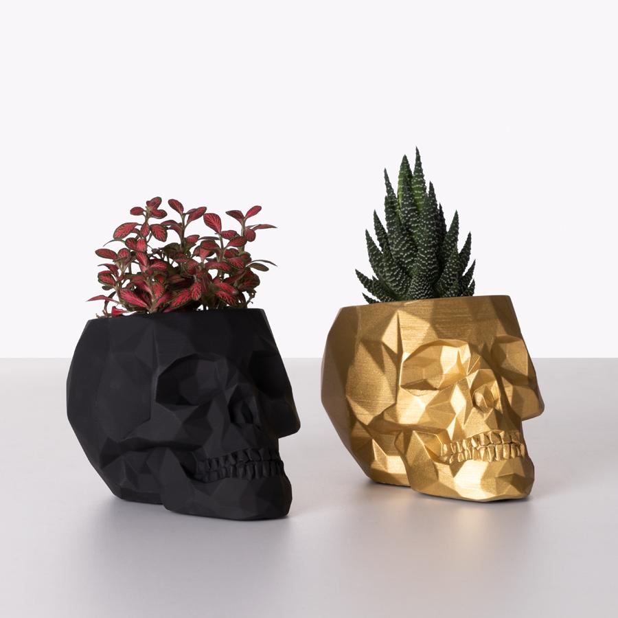 doniczki czaszki z roślinami