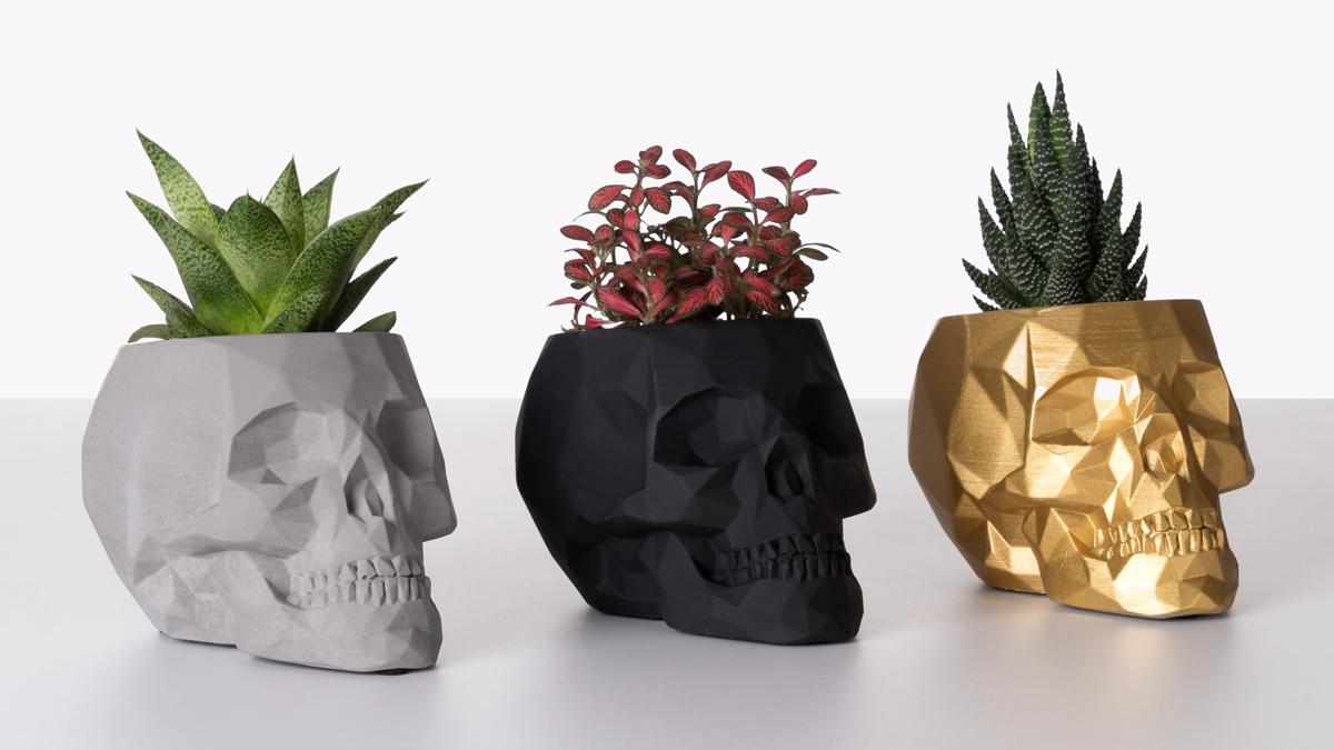 wersje doniczek czaszek z roślinami