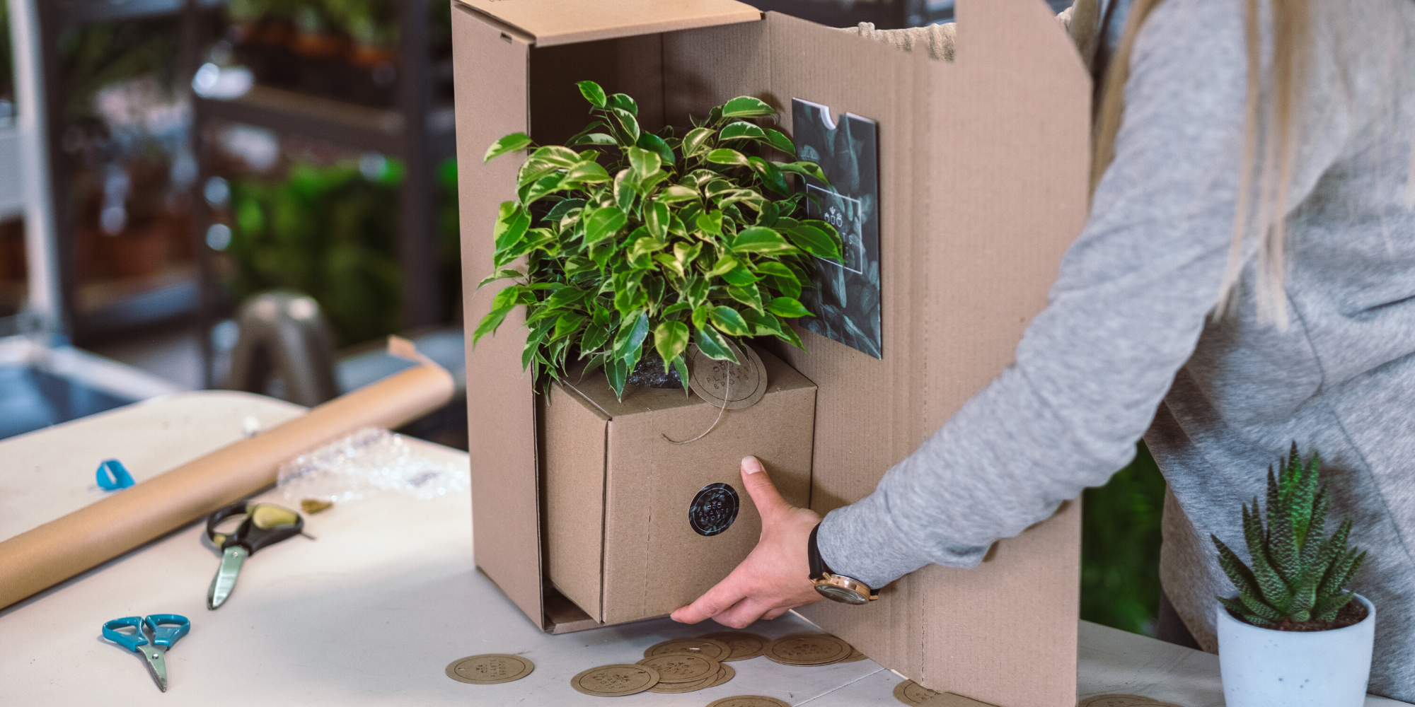 Jak wysyłamy rośliny?