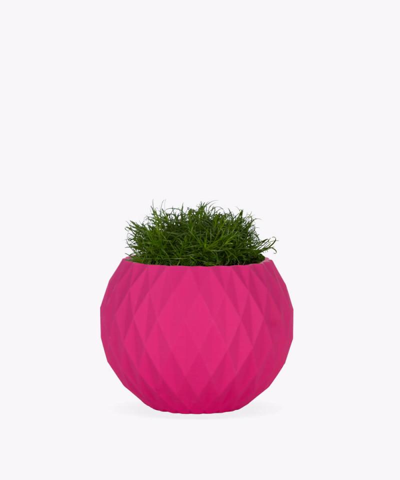 Karmnik rozesłany w różowej betonowej kuli