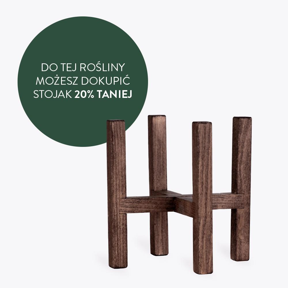 Stojak drewniany dopasowany do doniczki 15 cm